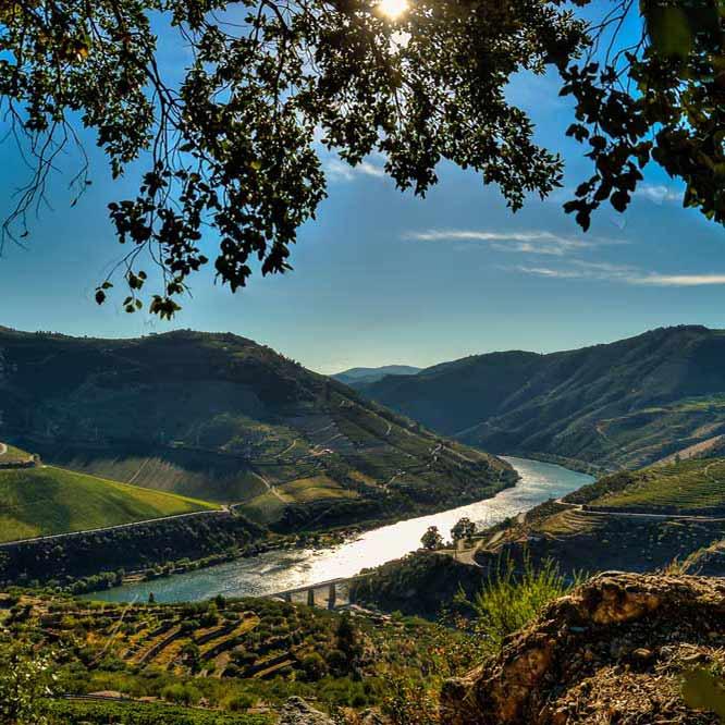 Išskirtinis Portugalijos Douro regiono vynas! Teisybė ar mitas?