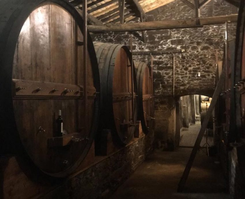 vyno statinė